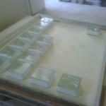 IMG00552-20111117-1200